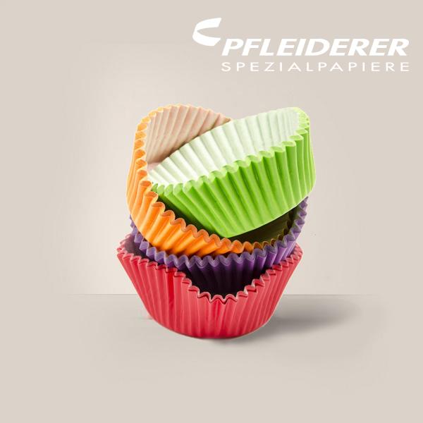 logo-pfleiderer